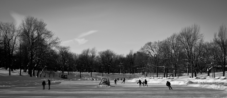 Parc LaFontaine Ice Rink