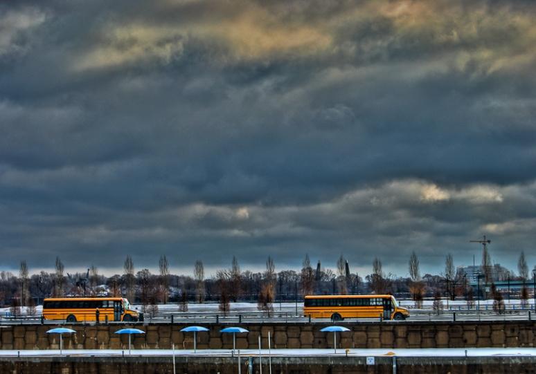 Yellow school buses