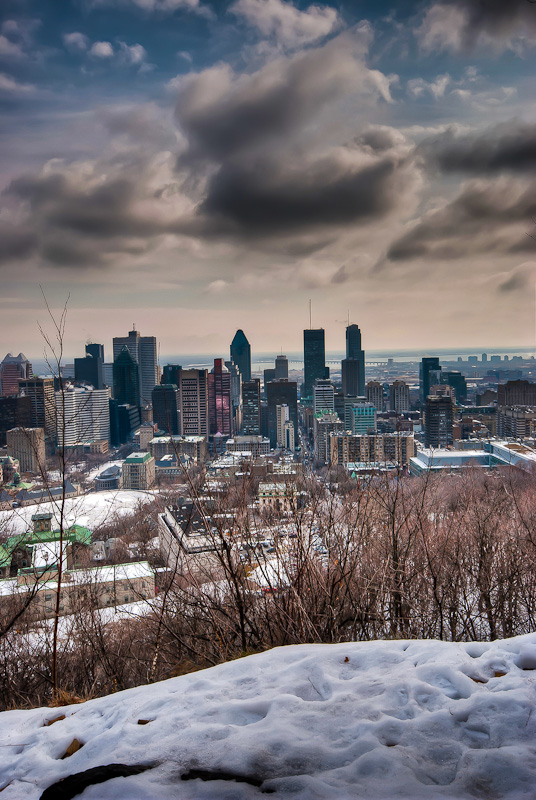 View of the Montreal Skyline from the Escarpment path on Mont Royal