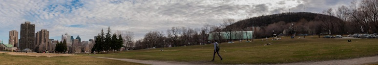 Panorama of Montreal skyline from parc Jeanne-Mance