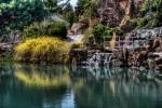 Dream Lake Garden