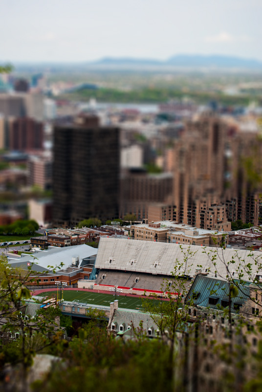 Molson Stadium in miniature