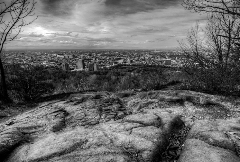 View of Montreal East from Mount Royal