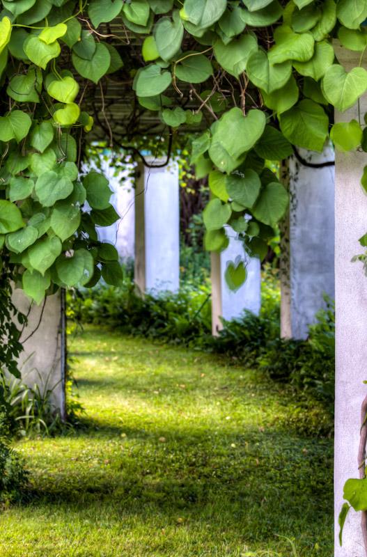Garden of Foyer de charité Notre Dame d'Orléans