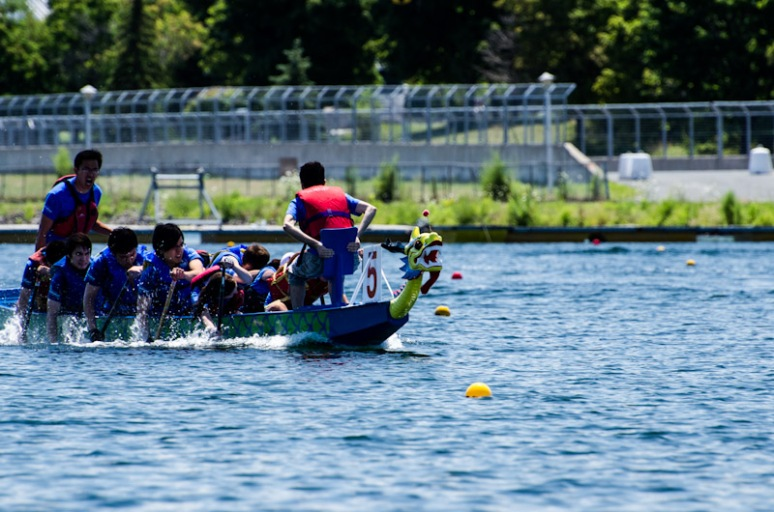 Dragon Boat racing at the Olympic Basin