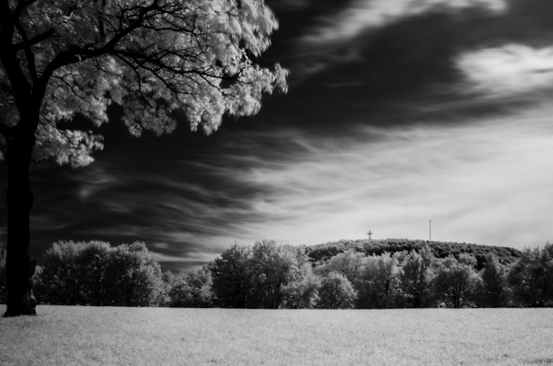 Infrared shot of Mount Royal from Parc Jeanne-Mance