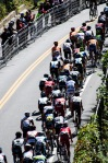 Grands Prix Cyclistes de Montreal - The pack