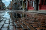 Reflections on rue Saint Paul