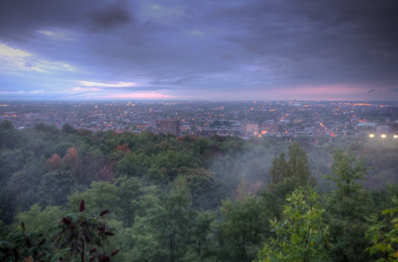 Mist on Mount Royal