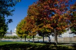Autumn jogger at Basin Bonsecours