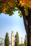 Clock tower in autumn