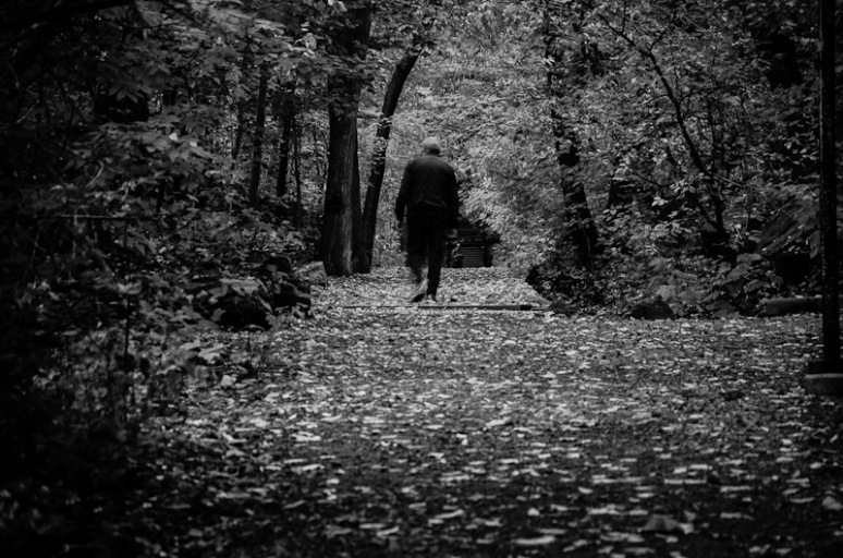 A lone forest walker