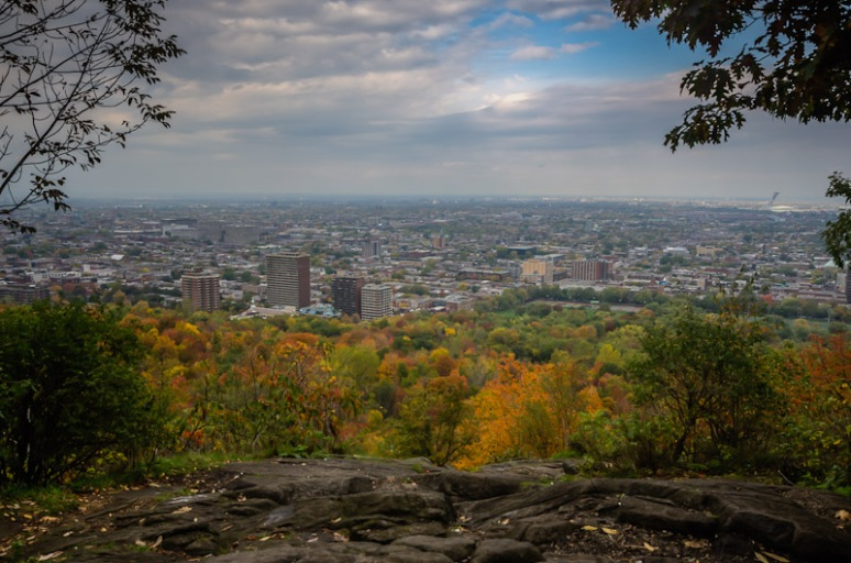 Autumn on Mount Royal