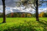 parc Jeanne-Mance
