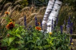 Landscaping at Jarry Park Lake