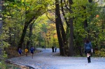 People enjoying autumn on Mount Royal