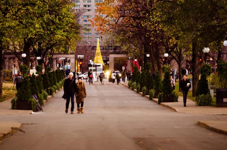 PVM Christmas tree lights from McGill University