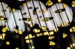 PVM Christmas Tree lights with Bokeh