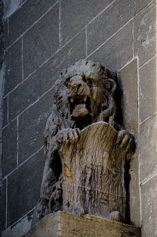 Stone lion at McGill University