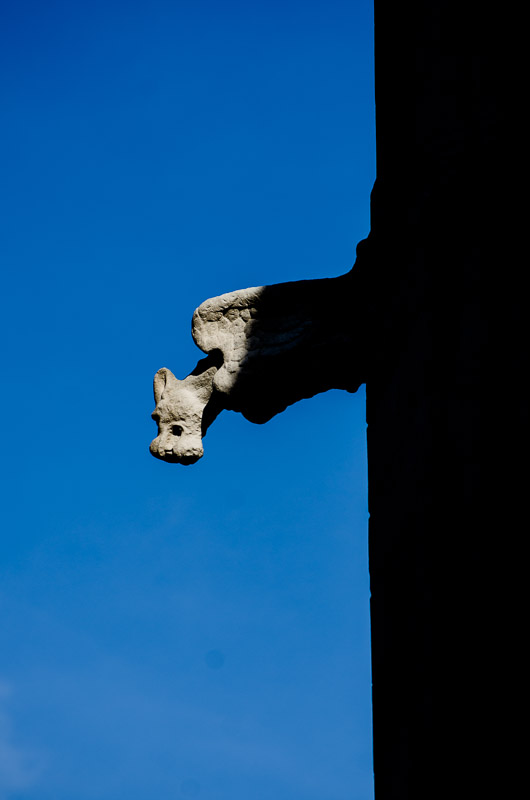 Gargoyle at Redpath Hall