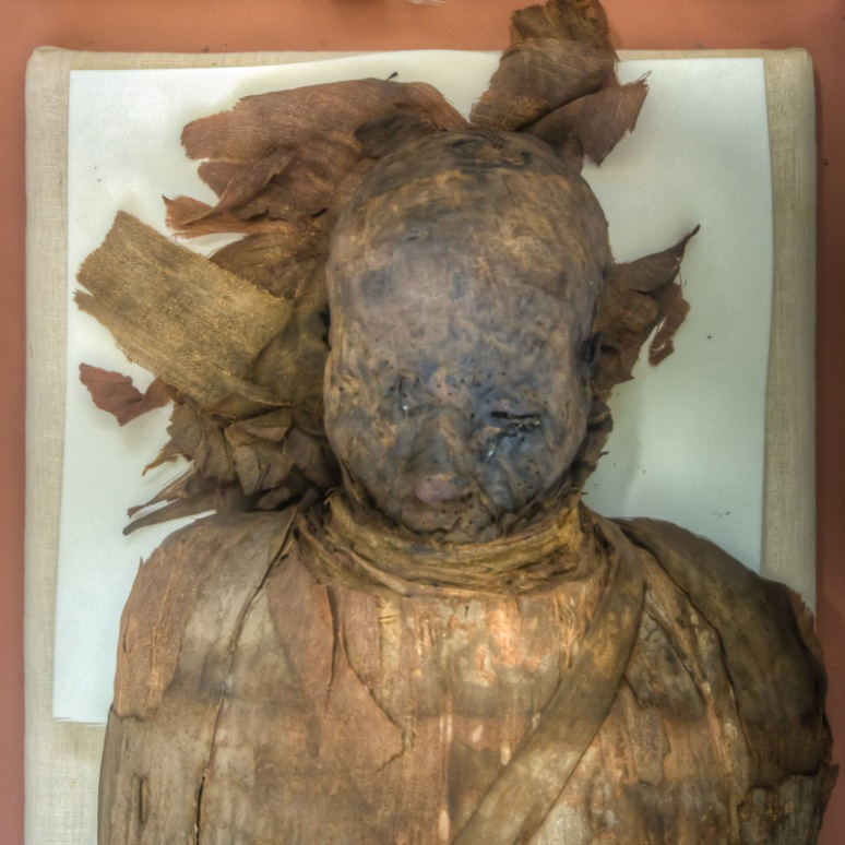 One of the Egyptian Mummies on display