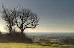 South Leicestershire landscape