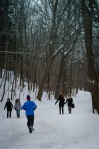 Boxing day on Mount Royal I