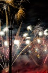 Day 203 - July 21: International firework festival